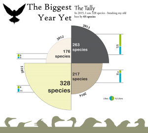 Big Year 2015 Infographic Promo Image